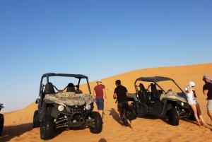 From Dune Buggy Desert Safari (Morning Adventure)