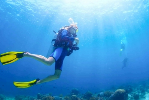 From Fujairah Scuba Dive & Snorkeling with live BBQ