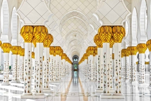 From Grand Mosque & Louvre Museum Abu Dhabi Tour