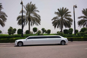 My Night 3-Hour Tour with Stretch Limousine