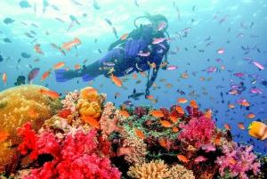 PADI Open Water 18-Meter Diving Certification