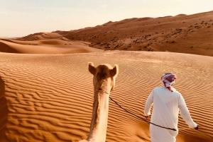 Premium Red Dunes, Camel Safari, & BBQ at Al Khayma
