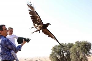 Private Falconry Safari