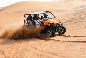 Self-Drive Dune Buggy and Camel Ride Adventure