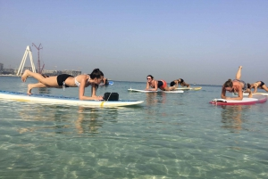 Stand-Up Paddle Board and Kayak Rentals