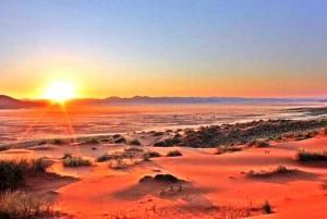 The Sunriser: 4-Hour Sunrise Safari from Dubai