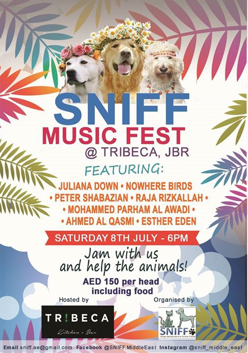 SNIFF Music Fest !