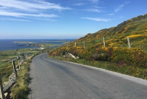 5-Day Tour of West Ireland: Blarney Stone & Cliffs of Moher