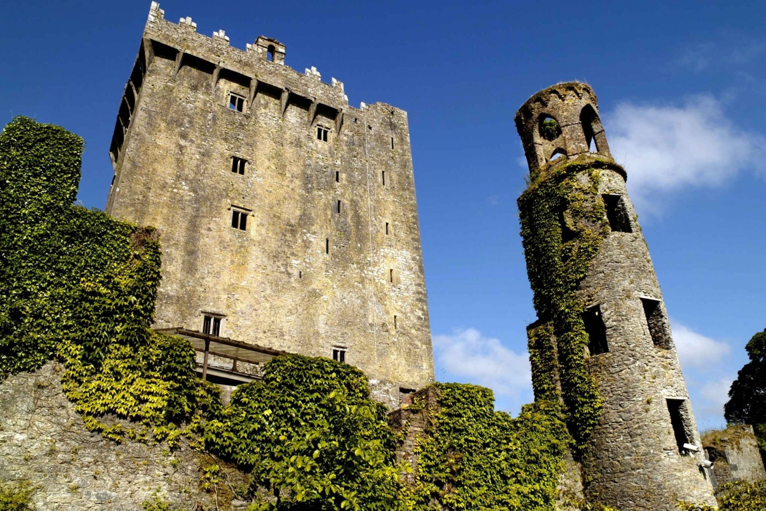 Blarney Castle Full-Day Tour from Dublin