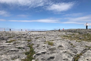 Cliffs of Moher, Connemara and Aran Islands Rail Tour