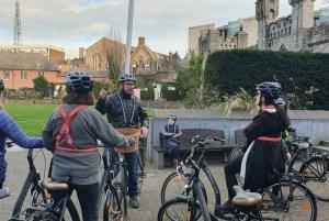 Dublin: 2.5-Hour City Bike Tour