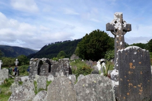 Dublin: Full-Day Wicklow Mountains Tour with Lunch