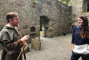 Dublin Surrounds Day Tour: Killiney Hill & Dalkey Castle