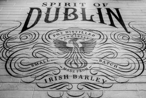 Dublin: Teeling Whiskey Distillery Tour & Tasting