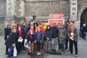Dublin: Top 10 City Highlights Walking Tour