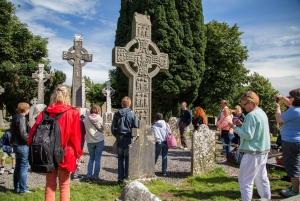From Dublin: Celtic Boyne Valley Tour