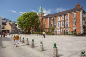From Dublin: Cork and Blarney Castle Full-Day Tour