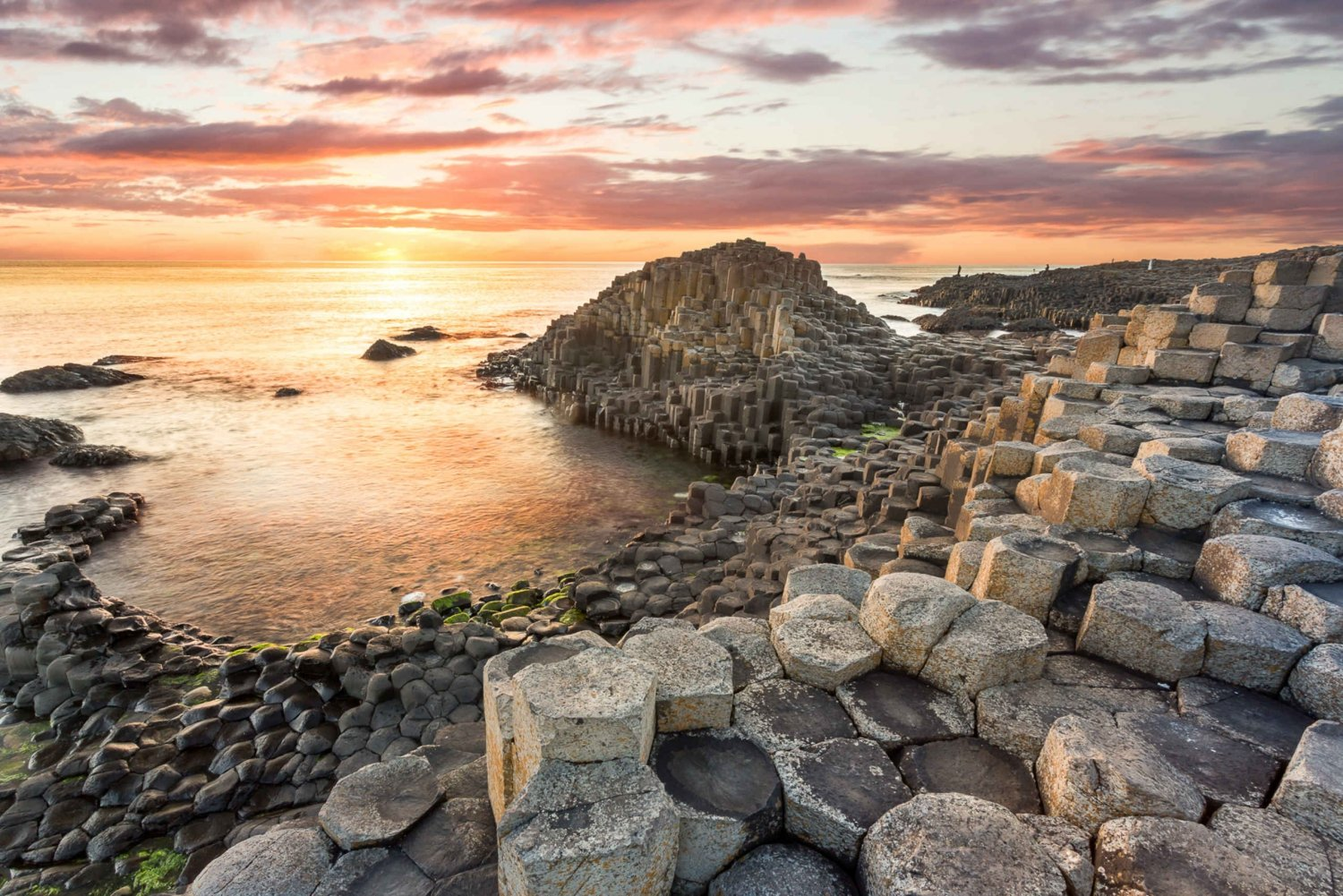 Full-Day Scenic Tour of the Giant's Causeway