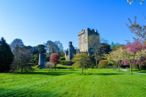 Full-Day Tour to Cork, Cobh and Blarney Castle