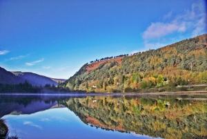 Glendalough, Wicklow, Kilkenny & Sheep Dog Trails