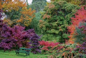 Powerscourt House and Gardens Private Tour from Dublin