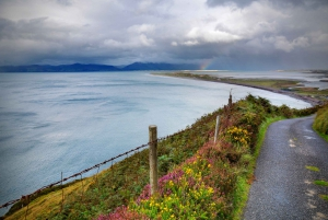 Rail Tour from The Ring of Kerry