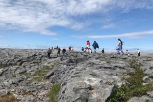 Rail Tour: The Cliffs of Moher & Bunratty Castle Tour