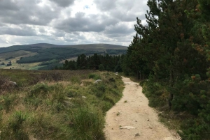 The Hills of Dublin Hiking Tour