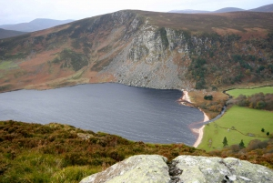 Wicklow National Park Private Tour