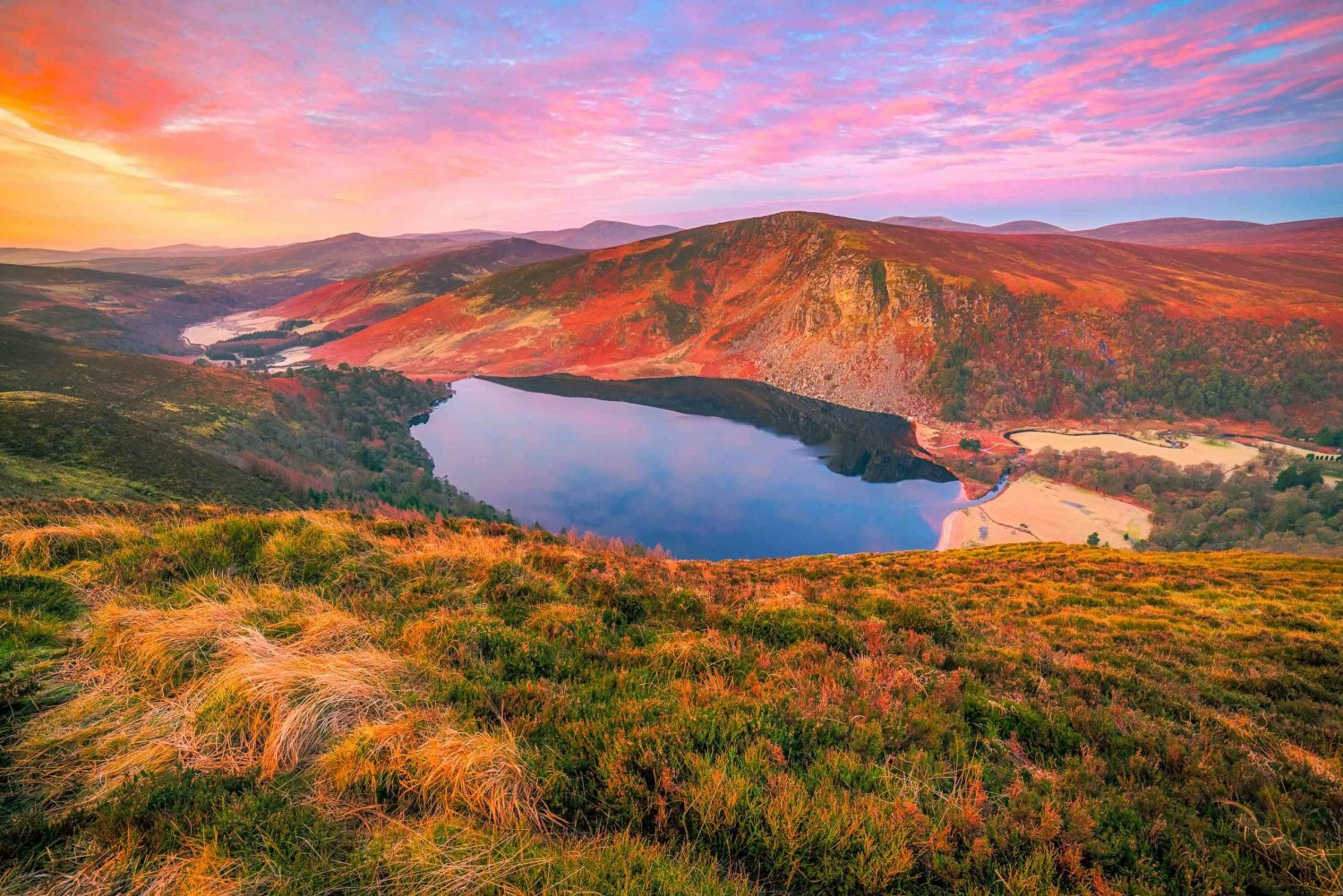 Wicklow National Park: Small Group Half-Day Tour
