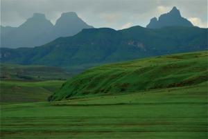 Drakensberg World Heritage Tour