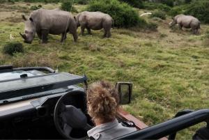 Durban: Exclusive Walking and Game Drive Combo Safari