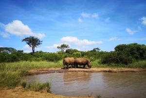 Durban: Hluhluwe Big 5 Safari with Pro Zeiss Binoculars