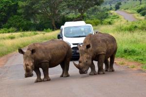 Durban: Private Hluhluwe Imfolozi Safari & iSimangaliso Tour