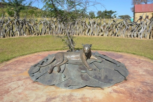 From Durban: Private Battlefield History Tour