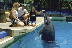 Half-Day uShaka Marine World Tour with Ticket