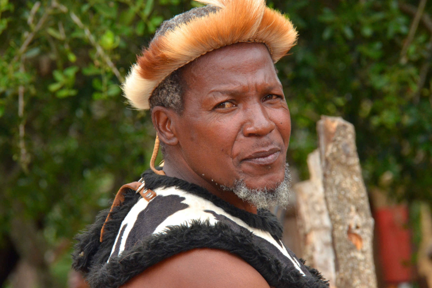 Shakaland and Zulu Culture Full-Day Trip