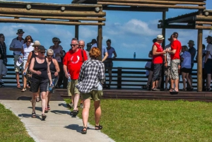 St Lucia: iSimangaliso Wetland Park: Full-Day/Half-Day Tour
