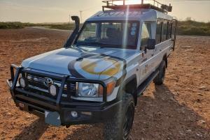 4-Day Addo to Karoo All-Inclusive Safari