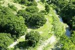 Settler's Park Nature Reserve Port Elizabeth