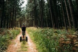 Tsitsikamma National Park: 1 or 2-Hour Segway Tour