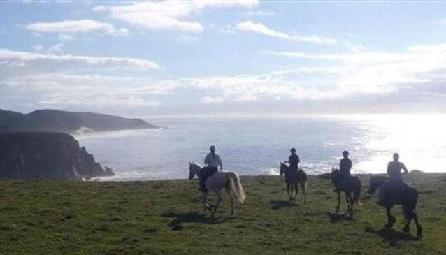 Wild Coast Horseback Adventures