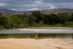 Cerro Mesa Reserve and Garrapatero Beach Tour