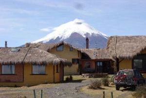 Cotopaxi National Park & Quilotoa Full-Day Tour