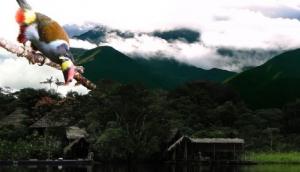 Ecuador Nature Expeditions