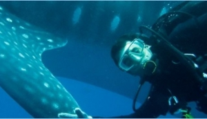 Exploramar Diving