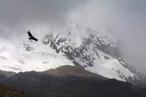 From Quito: Antisana Volcano Small Group Tour