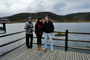 From Quito: Cotopaxi National Park and Lake Limpiopungo