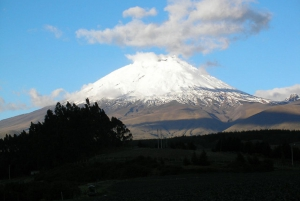 From Quito: Cotopaxi National Park & Quilotoa Day Tour