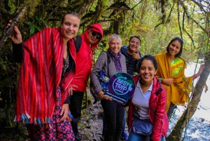 From Quito: Full-Day Papallacta Tour